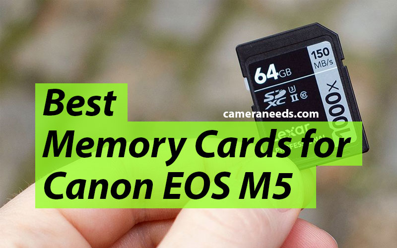 Best Memory Cards for Canon EOS M5