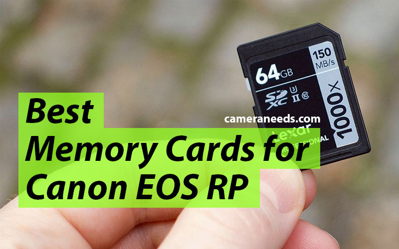 Best Memory Cards for Canon EOS RP