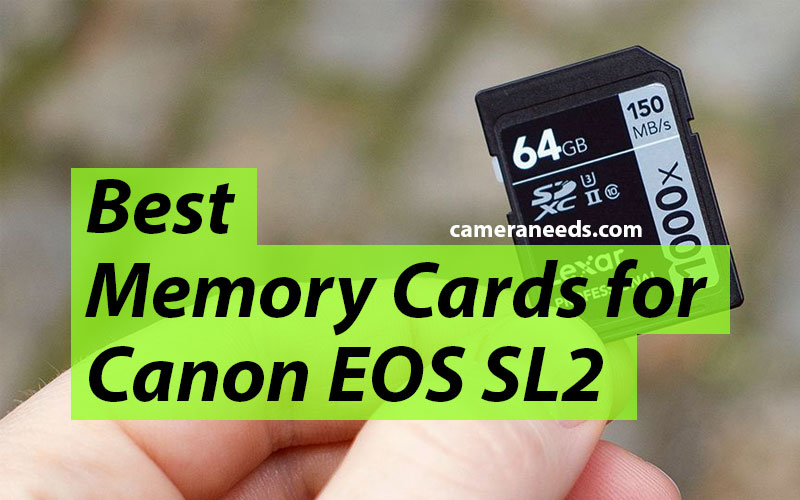 Best Memory Cards for Canon EOS Rebel SL2