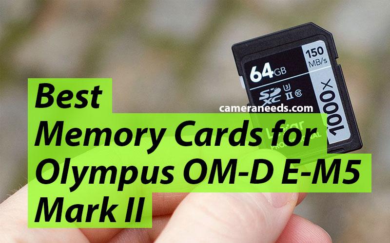 Best Memory Cards for Olympus OM-D E-M5 Mark II