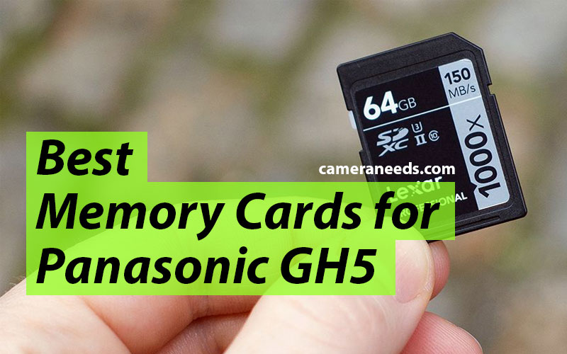 Best Memory Cards for Panasonic GH5