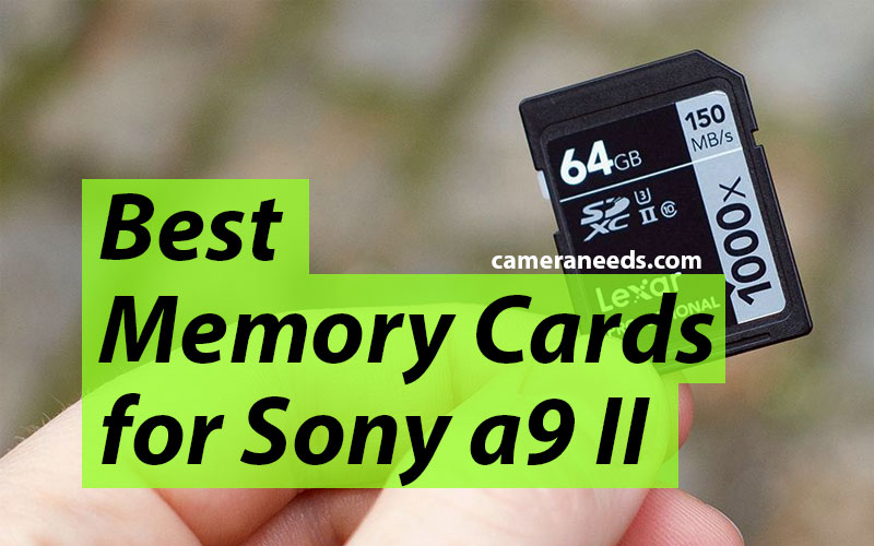 Best Memory Cards for Sony a9 II