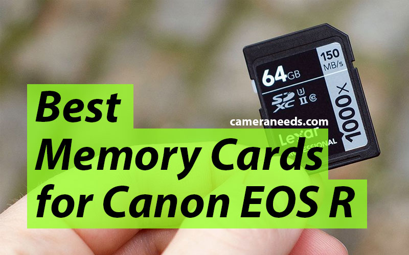 Best Memory Cards for Canon EOS R