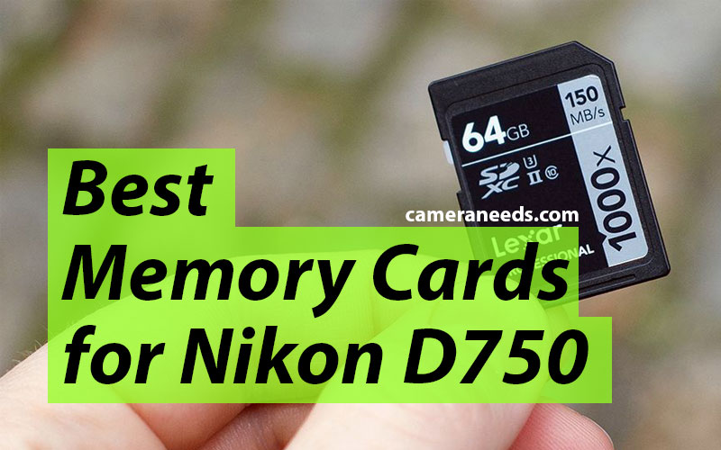 Best Memory Cards for Nikon D750
