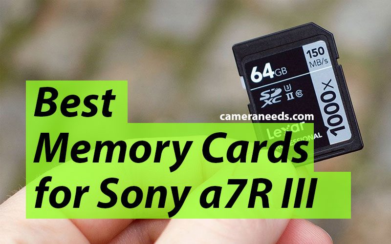 Best Memory Cards for Sony a7R III