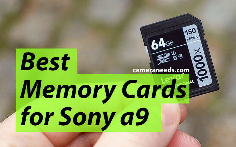 Best Memory Cards for Sony a9