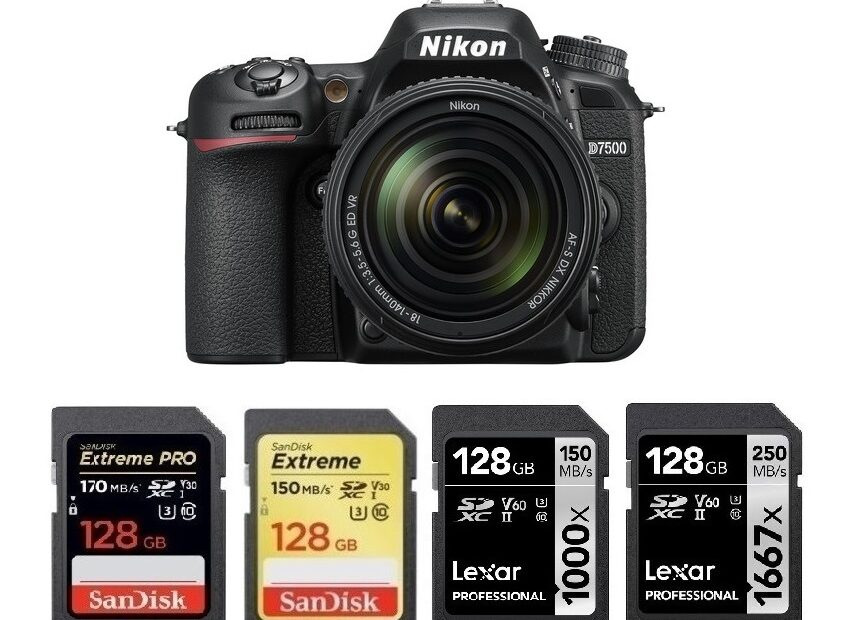 Memory Cards for Nikon D7500